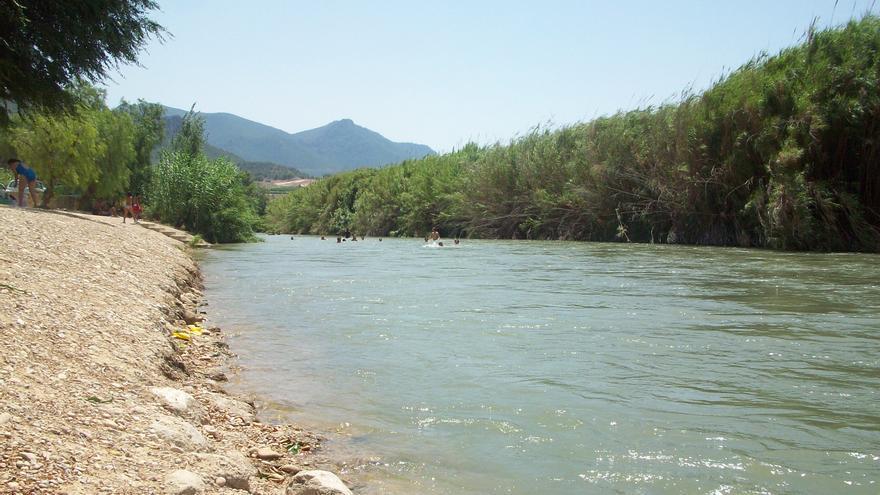 Paraje del río Segura a su paso por Cieza, a la que afectaría el proyecto de paseo ribereño / EEA