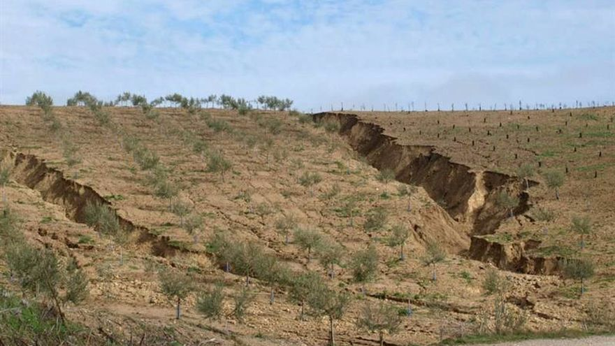 España, el país europeo con más riesgo de desertificación, alcanza ya el 20 por ciento