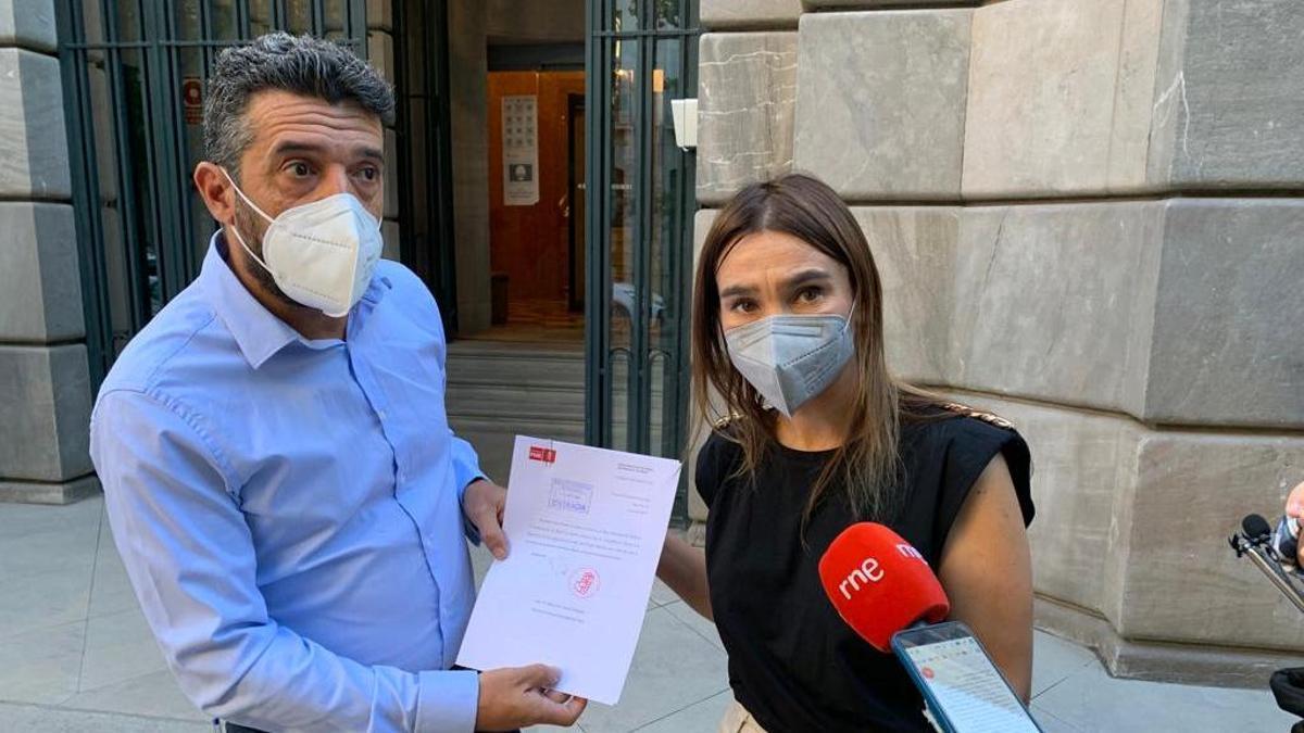 PSOE e IU piden que se depuren responsabilidades