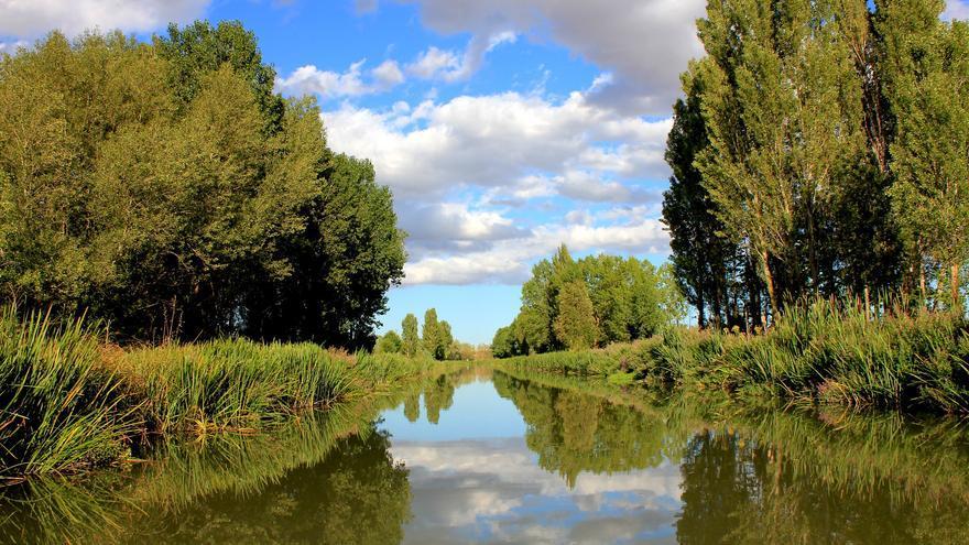 Un viaje a los campos de Palencia por el Canal de Castilla