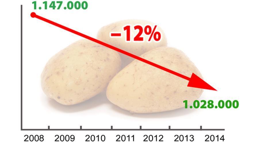 Caída del consumo de patata que resalta COAG, según los datos del Panel del MAGRAMA