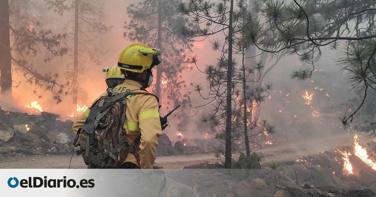 España entra en la fase de máximo riesgo de incendios forestales con la amenaza de un verano más caluroso de lo normal