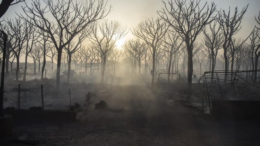 """La UME prevé que el incendio junto a Doñana esté """"totalmente controlado"""" a lo largo de este lunes"""
