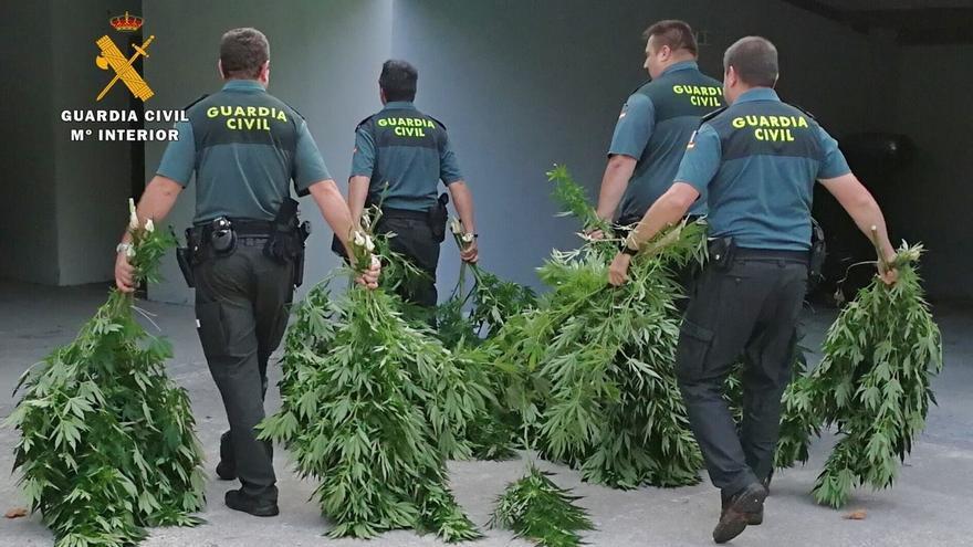 44 kilos de marihuana intervenidos y tres detenidos en tres operaciones en la región