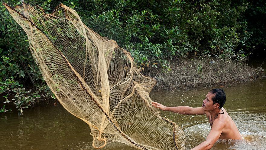 Un pescador intenta capturar peces en un manglar destruido en Surat Thani, Tailandia | Foto: Antolín Avezuela.