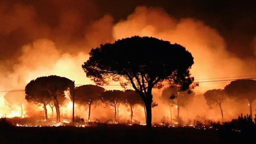 Imagen de EFE Televisión del incendio declarado anoche en el paraje La Peñuela de Moguer (Huelva)