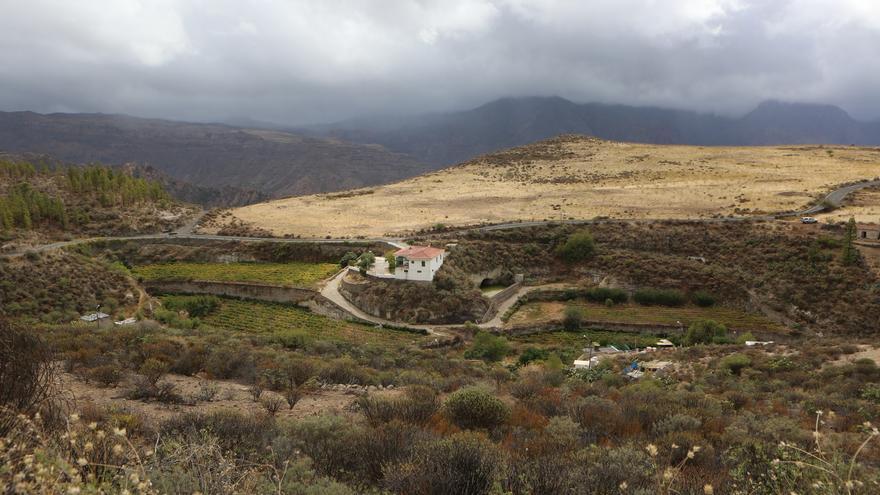 Cultivos en la Vega de Acusa Seca, en Artenara (Gran Canaria).