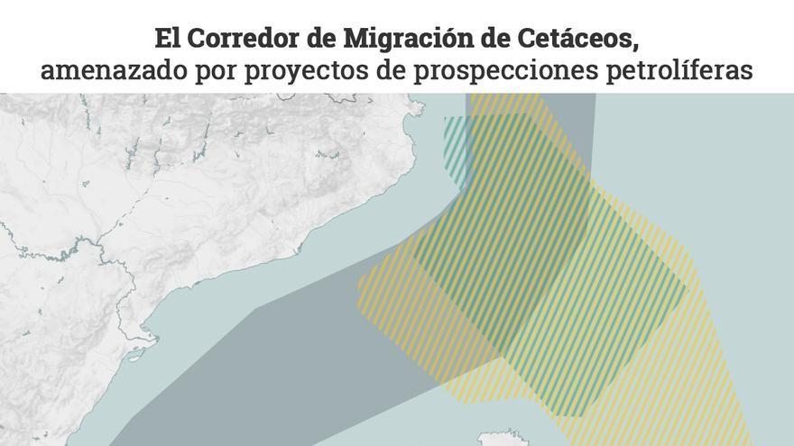 Prospecciones y corredor de cetáceos en el Mediterráneo español.