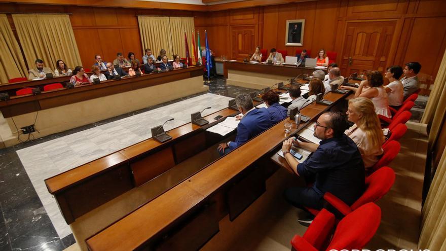 Panorámica del Pleno del Ayuntamiento | ÁLEX GALLEGOS