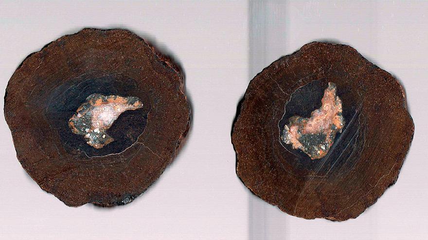 Los nódulos polimetálicos del fondo marino son ricos en diversos minerales / EFE