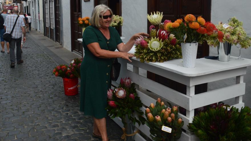 'La Palma es primavera' vuelve por Navidad a Santa Cruz de La Palma