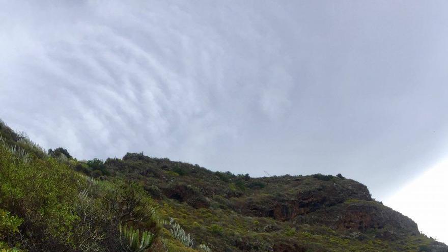 Caminantes en una ruta del Festival de Senderismo de La Palma.