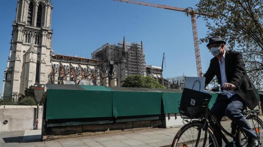 Notre Dame, un año después
