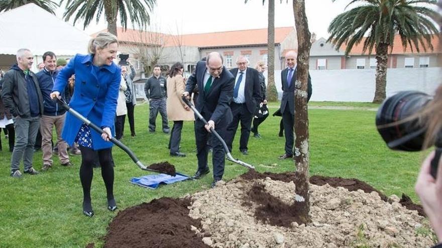 Plantan un retoño del Árbol de Gernika en el Hospital de Bermeo en reconocimiento a su labor