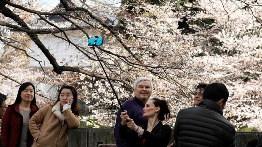 Un récord de 15,89 millones de turistas visitó Japón en la primera mitad de 2018