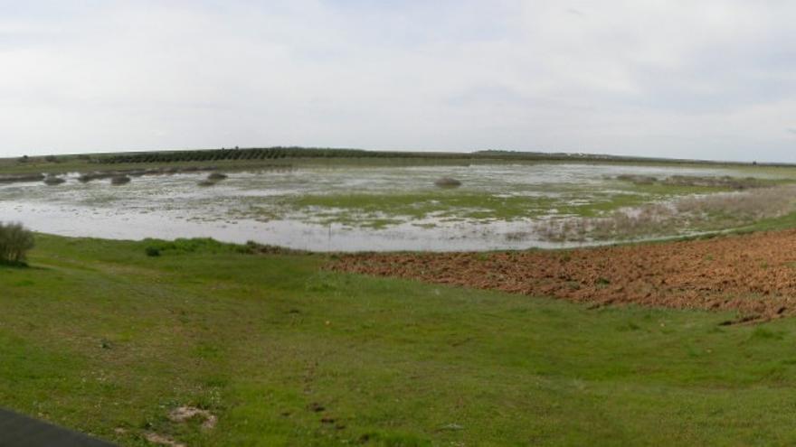 'Laguna Chica' en Puebla de Beleña (Guadalajara)