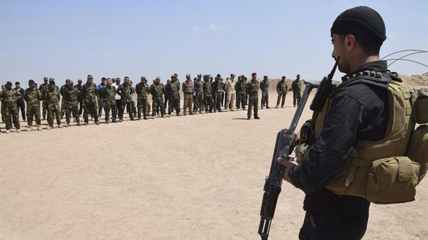 El Ejército iraquí avanza hacia Faluya y mata a decenas de yihadistas