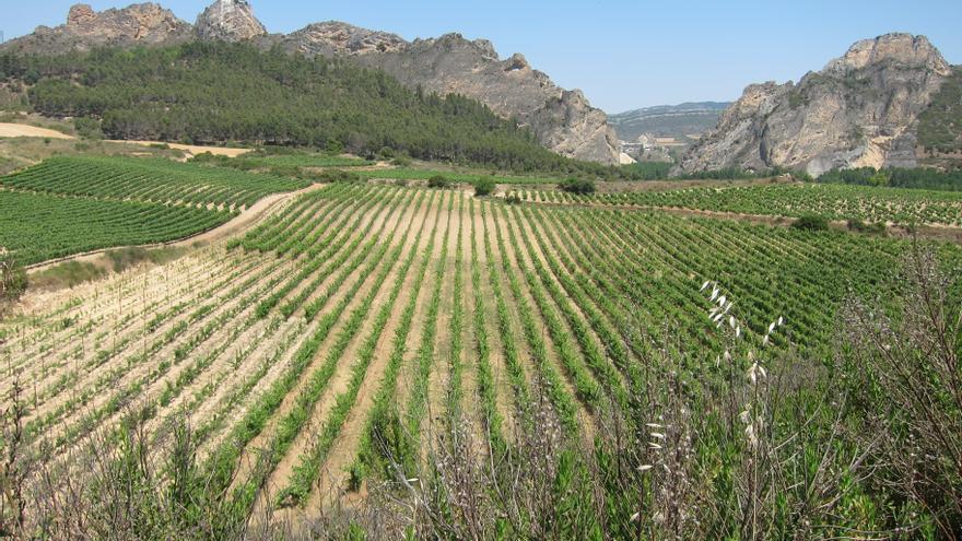 Gobierno vasco destina 1,5 millones a la recuperación de caminos rurales de Álava destrozados por climatología adversa