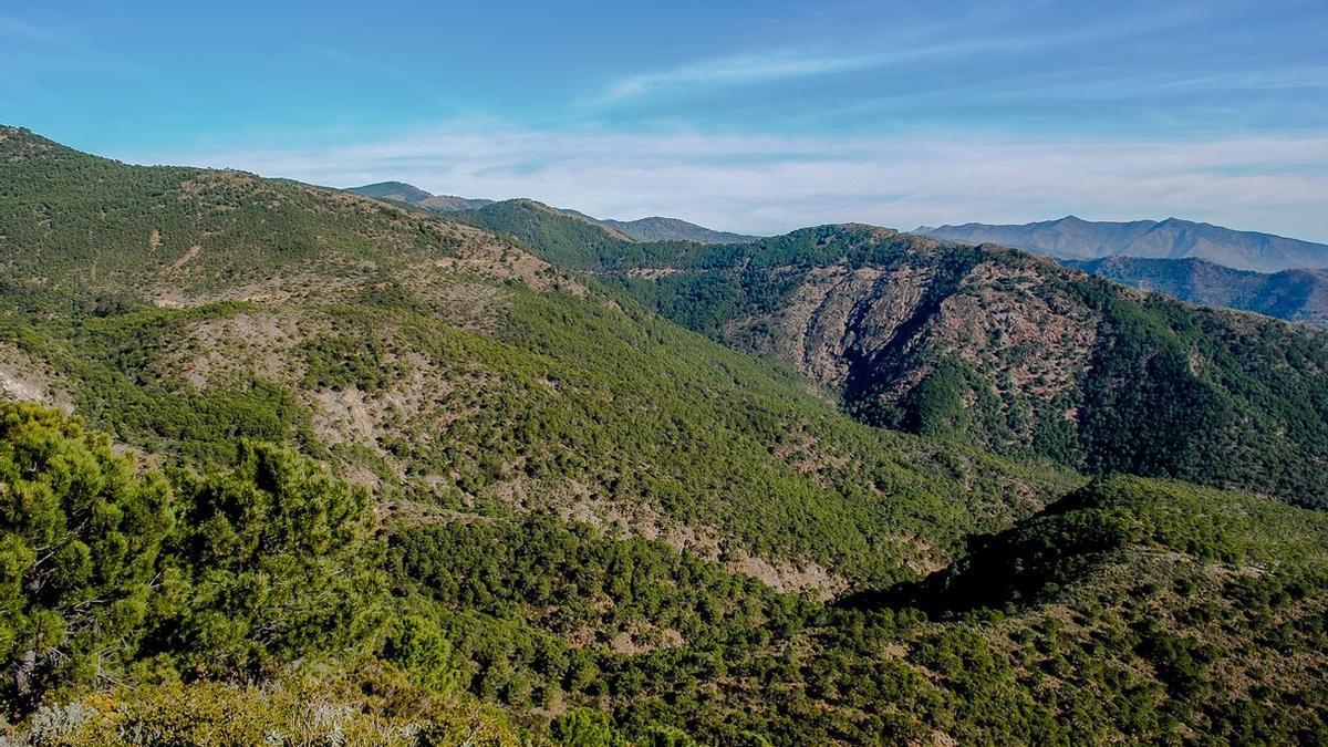 Vistas de Sierra Bermeja