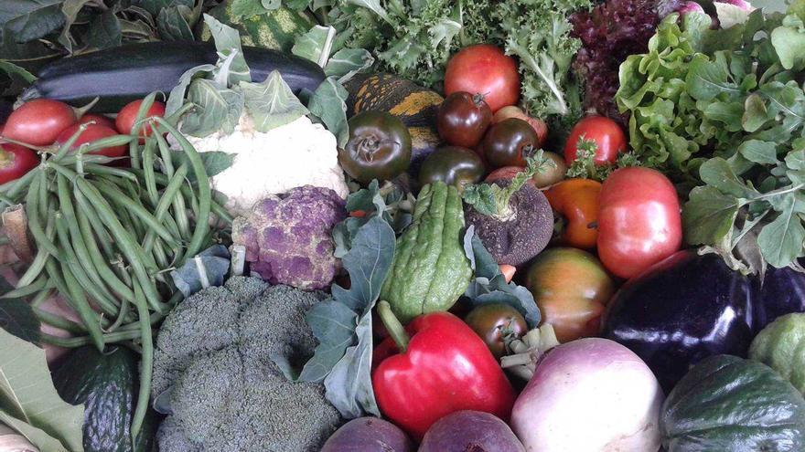 Cesta de frutas del Agromercado de Breña Alta.