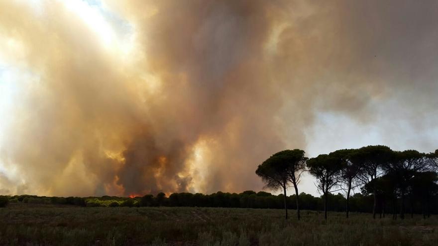 El fuego, visto desde el núcleo turístico de Nuevo Portil.