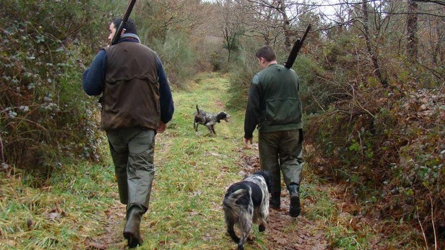 La Xunta da vía libre a los cazadores para circular por toda Galicia persiguiendo lobos y jabalíes pese a las restricciones de movilidad