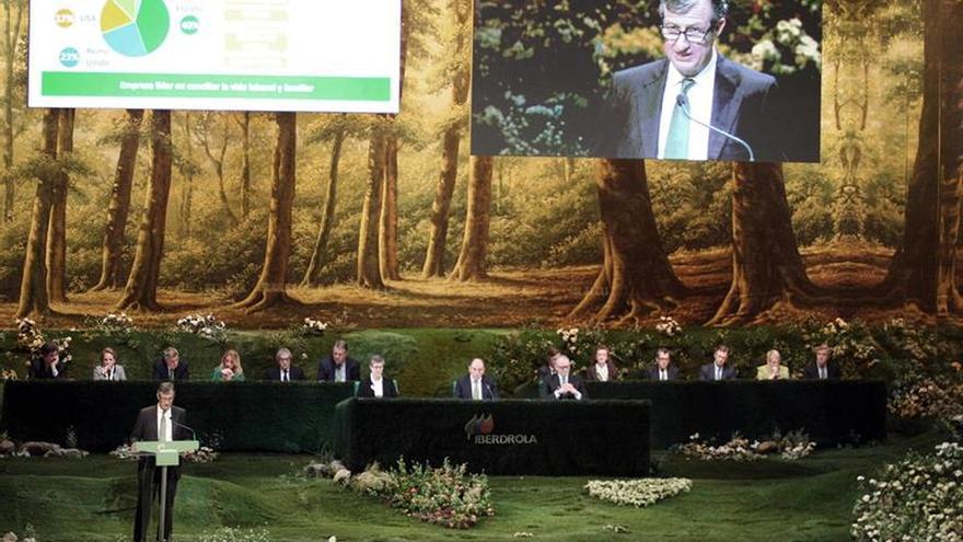 Iberdrola dice que sólo contó con información pública para invertir en Bankia