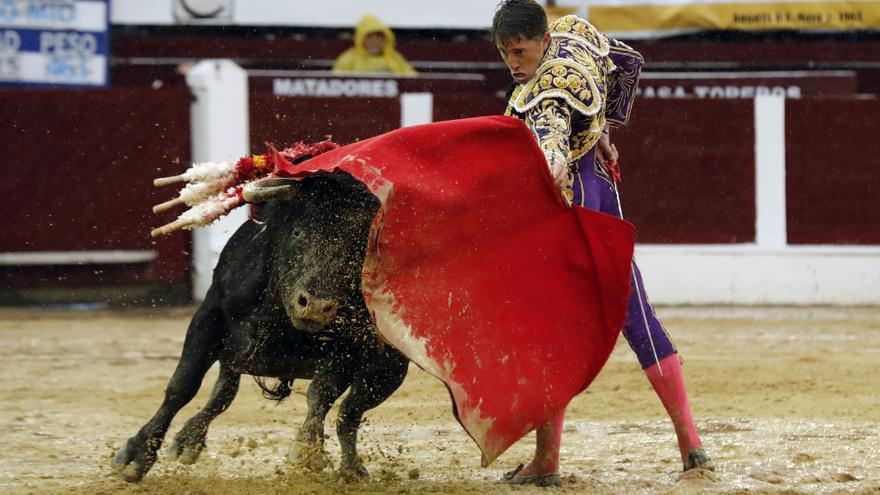 """Guadalajara suspende los festejos taurinos ante el """"elevado riesgo"""" de brotes de COVID-19"""