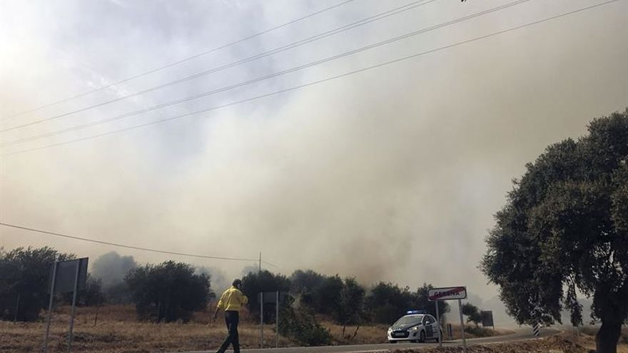 Controlado el incendio forestal de La Puebla del Río (Sevilla)