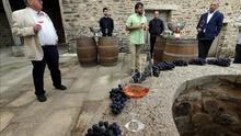 """Bodegas """"Pittacum"""" cerrará un año """"excelente"""" con 280.000 kilos de uva"""