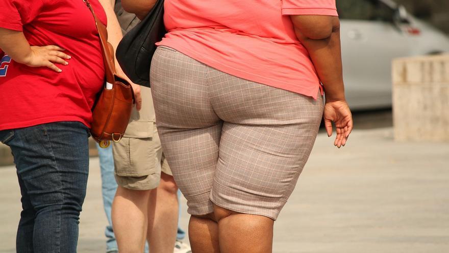 obesidad genes