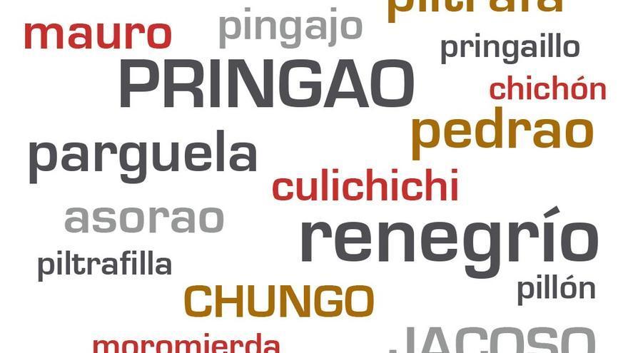 El lenguaje y sus modismos, nos ha dejado un auténtico glosario de expresiones. (Canarias Ahora).