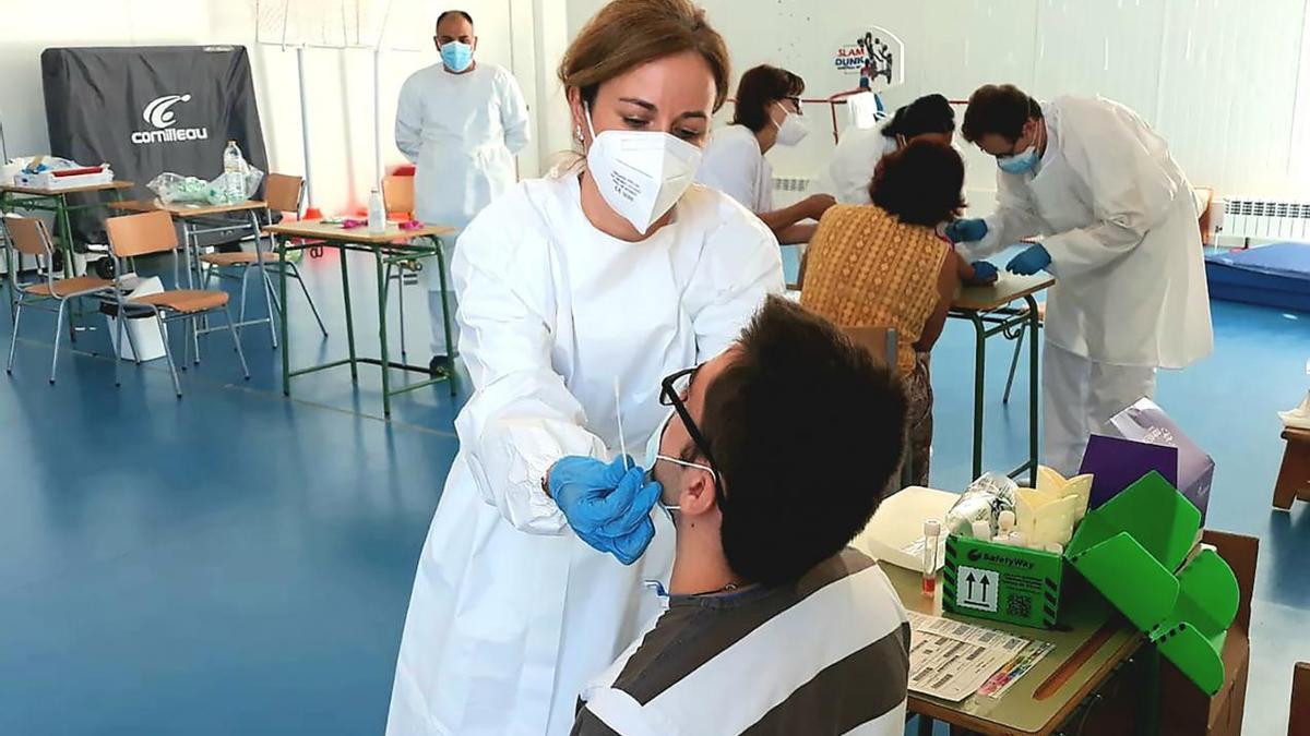Realización de pruebas PCR.