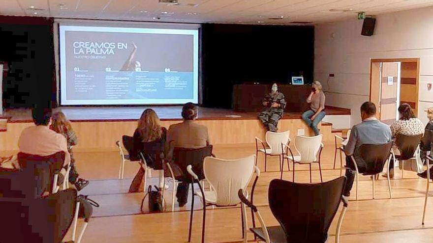El Cabildo presenta a los 14 ayuntamientos el Circuito Insular de Artes Escénicas y Música