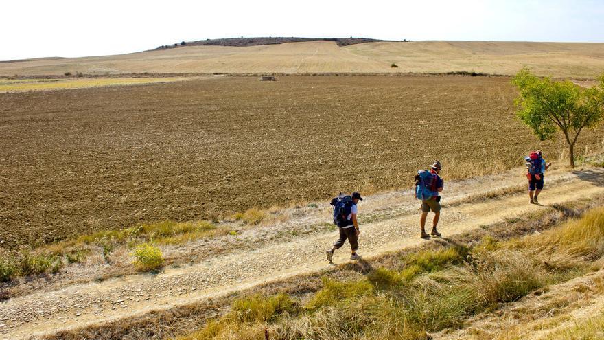 Tres peregrinos avanzan hacia Terradillos de los Templarios, en Palencia. VA