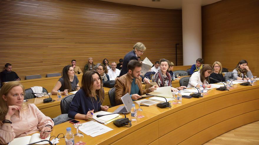 Un momento de la comisión parlamentaria en la que se ha debatido la Ley Trans del Consell