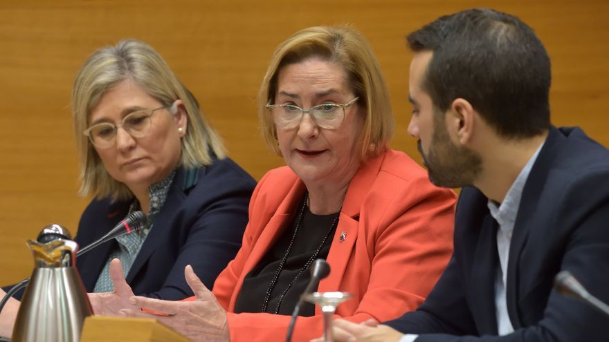 Teresa Gisbert, Fiscal Superiro de la Comunitat Valenciana, comparece en el parlamento autonómico