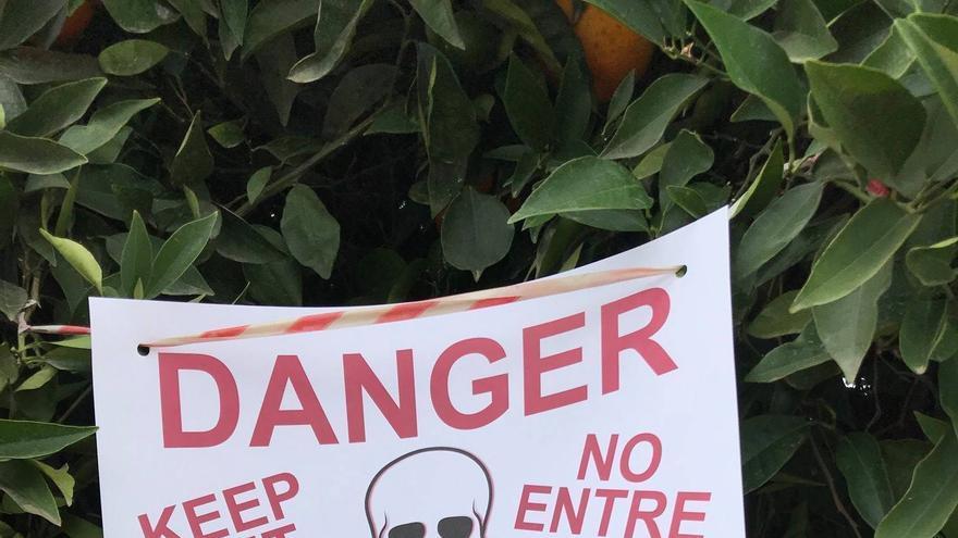 Campaña de grupos de activistas contra el uso de pesticidas peligrosos para la salud.