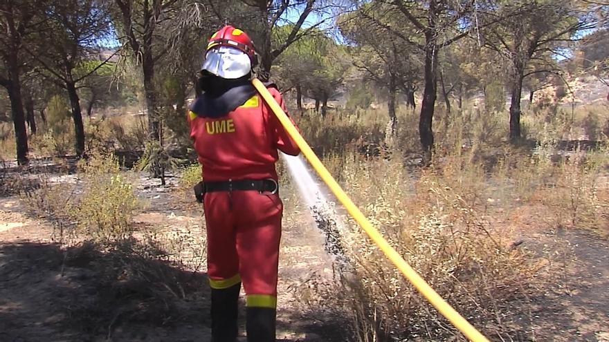 El Infoca da por extinguido el incendio forestal de Moguer que afectó a más de 8.000 hectáreas