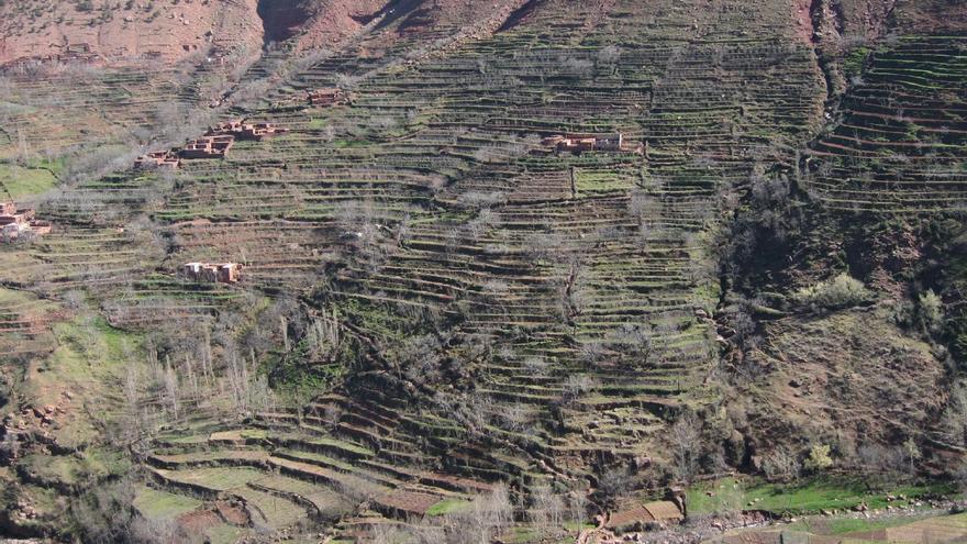 Terrazas de cultivo en el Valle de Oukaimeden. Tadd and Debbie Ottman