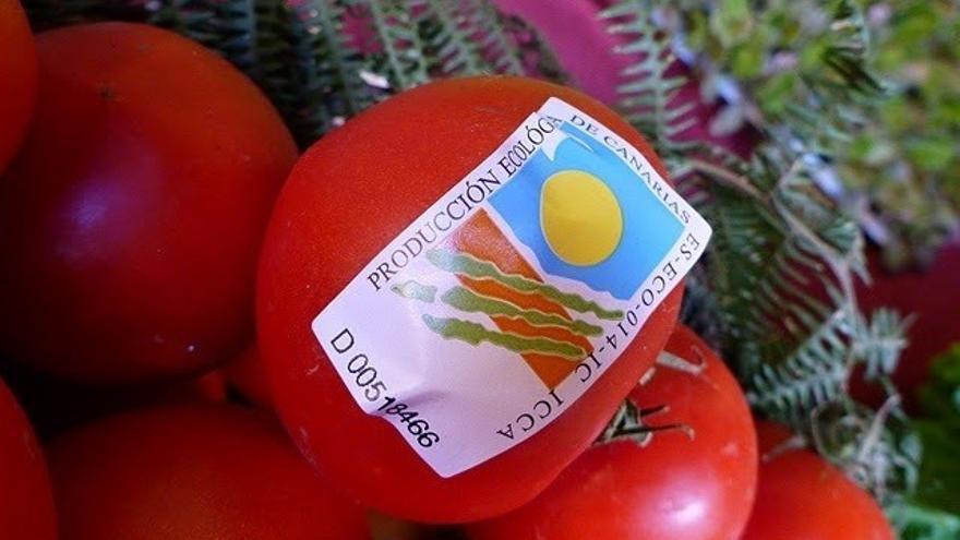 Tomate certificado como agricultura ecológica en las islas