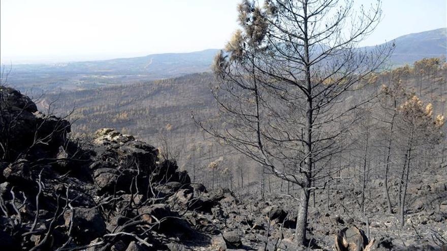 La Junta de Extremadura invertirá 5 millones en un Plan de Actuación Urgente en Gata