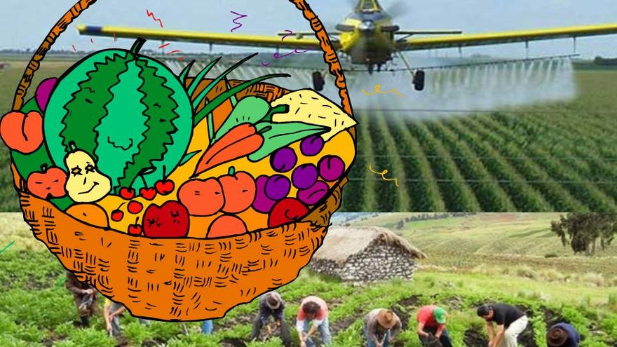 Agricultura Ecológica Versus Convencional La Necesidad De