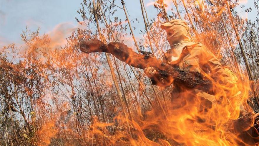 H&M suspende la compra de cuero brasileño por los incendios en la Amazonía