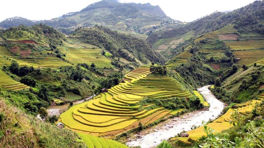 Las disputas por la tierra, foco permanente de conflicto en Vietnam