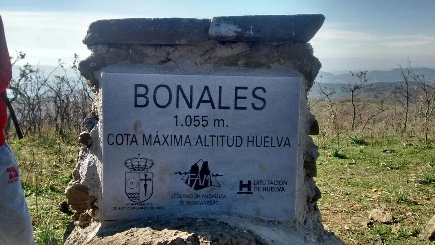 Cerro Bonales.