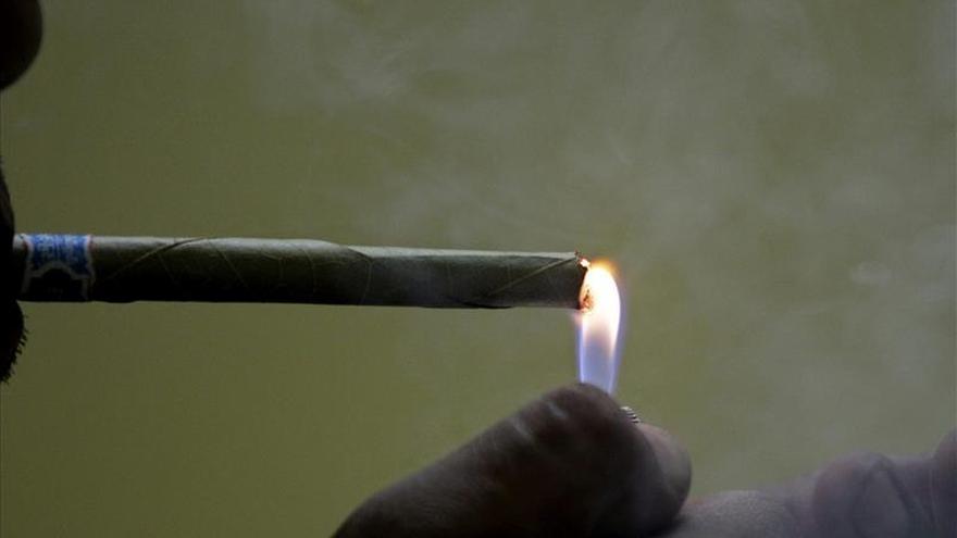 Marihuana, tecnología y reparto a domicilio, la lucha legal de Nestdrop
