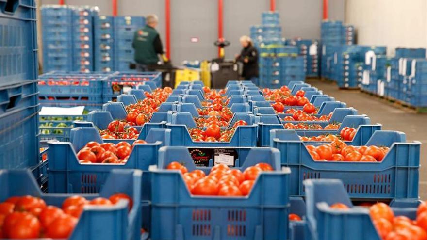 Los alimentos importados por la UE con exceso de pesticidas suben al 6,5 por ciento