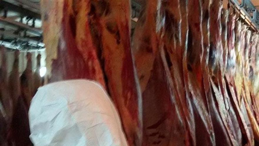 Los detenidos por el caso de la carne de caballo fraudulenta se elevan a 65