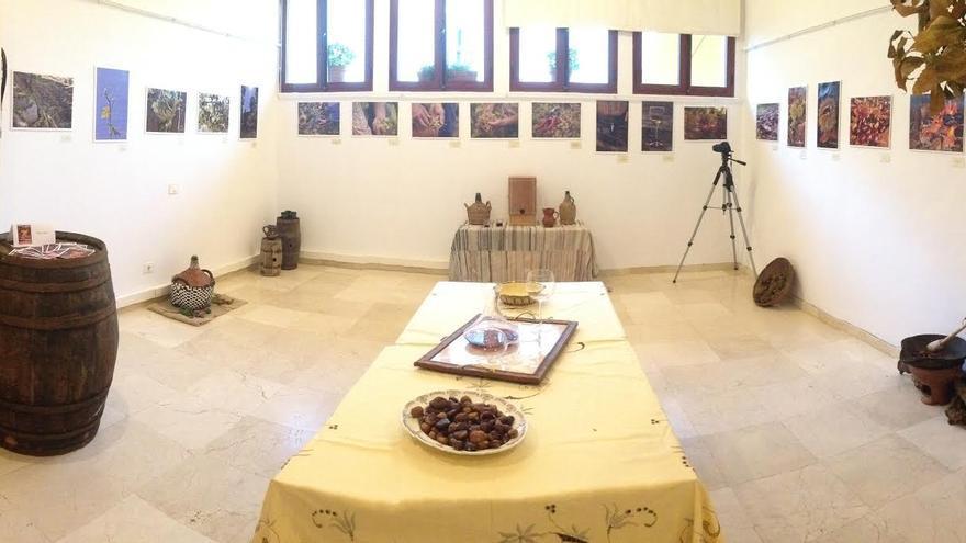 En la imagen, exposición de fotografías en honor al vino en la Casa de la Cultura de Puntallana.